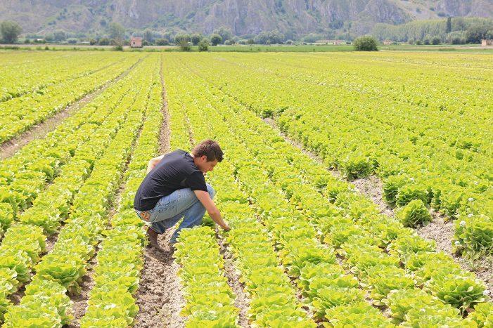 Irrigazione nel Fucino a rischio, Confragricoltura chiama a raccolta i sindaci