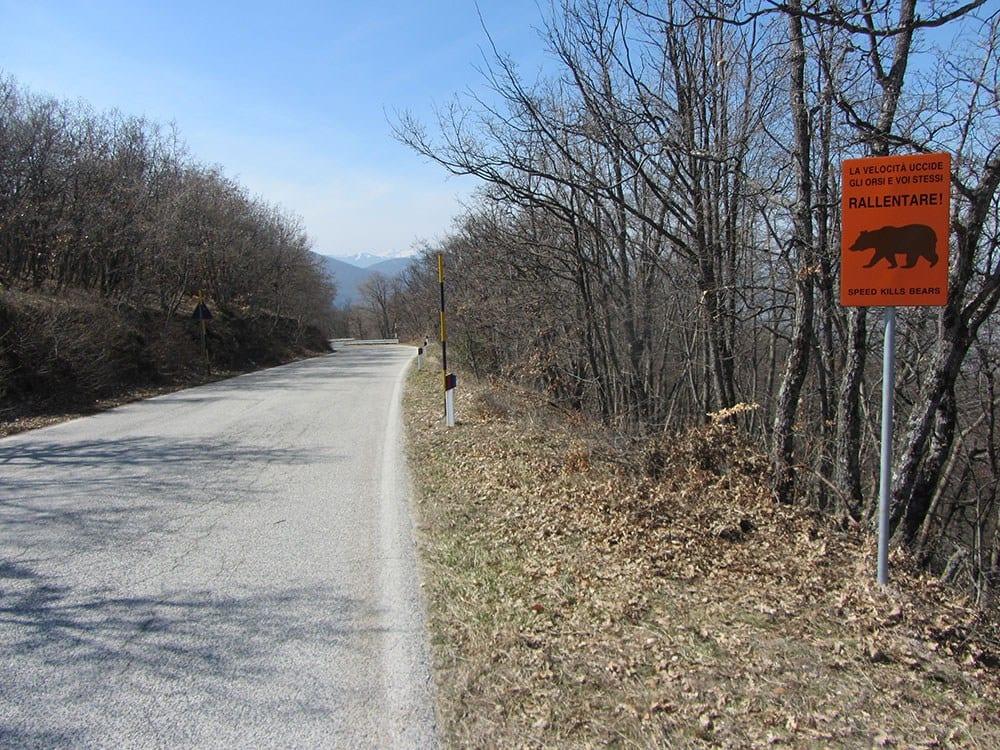 Fermiamo le gare motociclistiche sulle strade di montagna for Cabina di montagna grande orso