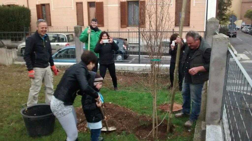 L 39 assessore presutti pianta 10 nuovi alberelli nel for Alberelli per giardino