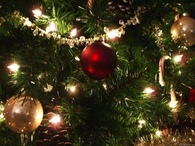 Cultura, musica e solidarietà nella magia del Natale luchese
