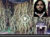 marijuana-arresto-fucino-canapa-indiana