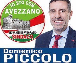 Banner-elezioni-Domenico-Piccolo-4.jpg
