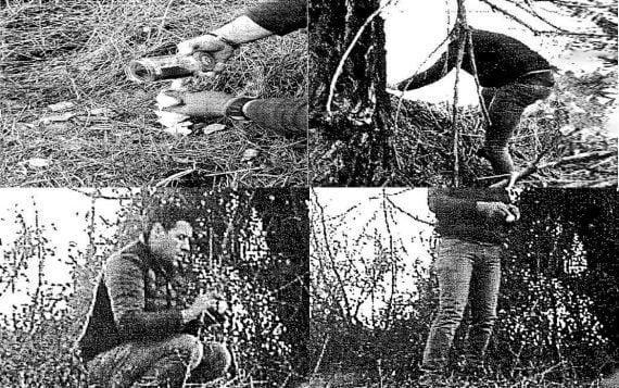 Operazione Lady Oscar, spacciatori incastrati dalle fototrappole per gli orsi. Tra gli indagati 6 marsicani