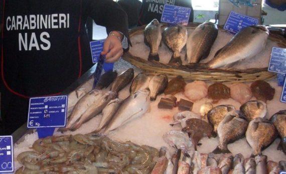 Partita di tonno in cattivo stato di conservazione scoperta dal Nas,  maxi sequestro in autostrada