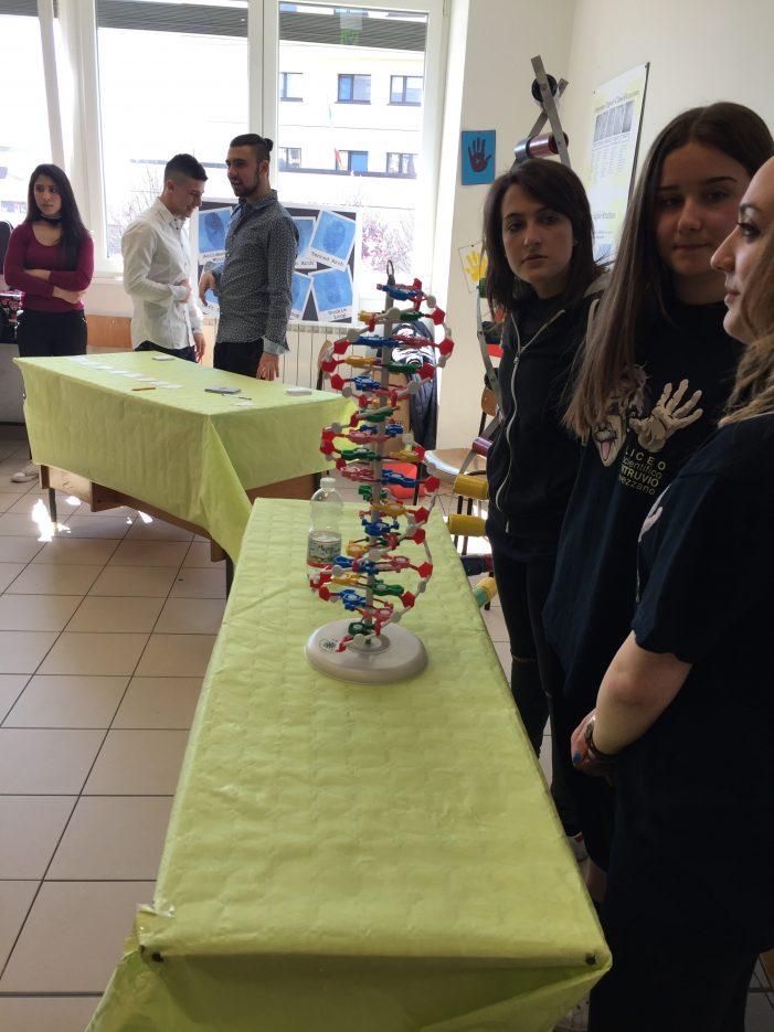 """Al Liceo """"Vitruvio"""" di Avezzano si lavora alla XIV edizione della settimana della cultura scientifica e tecnologica"""